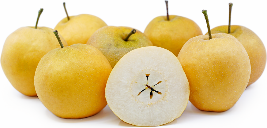 Asian pear history