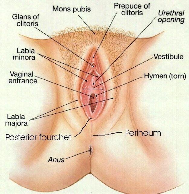 Mega pee holes porn pic