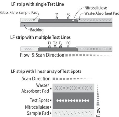 Multiple strip scanning
