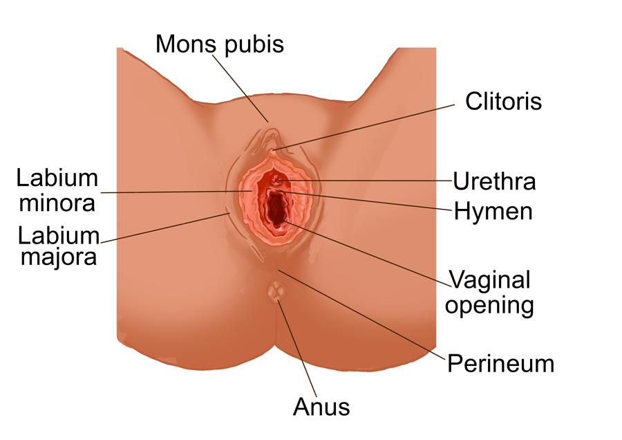 Abnormal vagina lips
