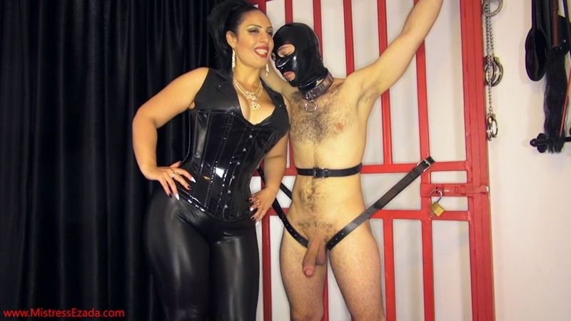 Queen reccomend Mistress light domination tease
