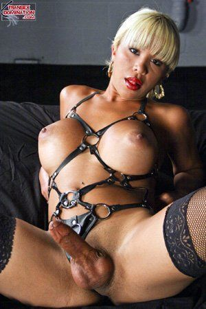 Stewart recommend best of shemale bondage extreme