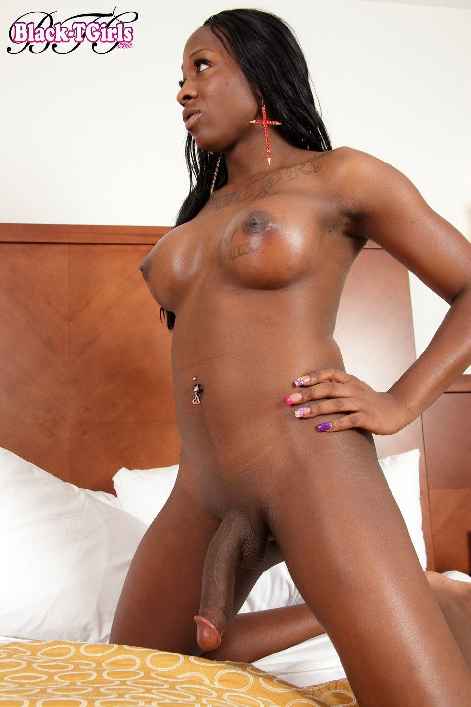 Black huge cock shemale